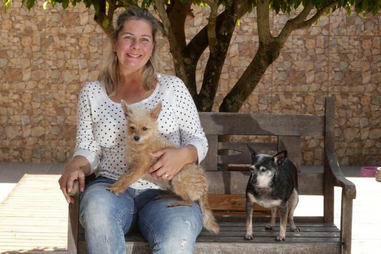 Adote um Amor: Ativista animal da Capital Catarinense já cuidou de 600 animais