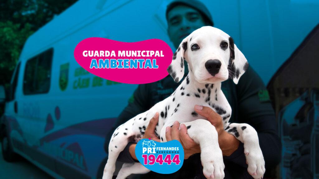 https://www.prifernandes.com.br/wp-content/uploads/2020/10/Capa-Videos-guarda-municipal2-1024x576.jpg
