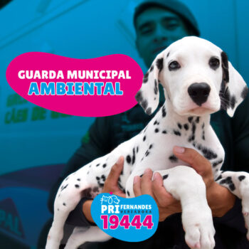 GUARDA MUNICIPAL AMBIENTAL