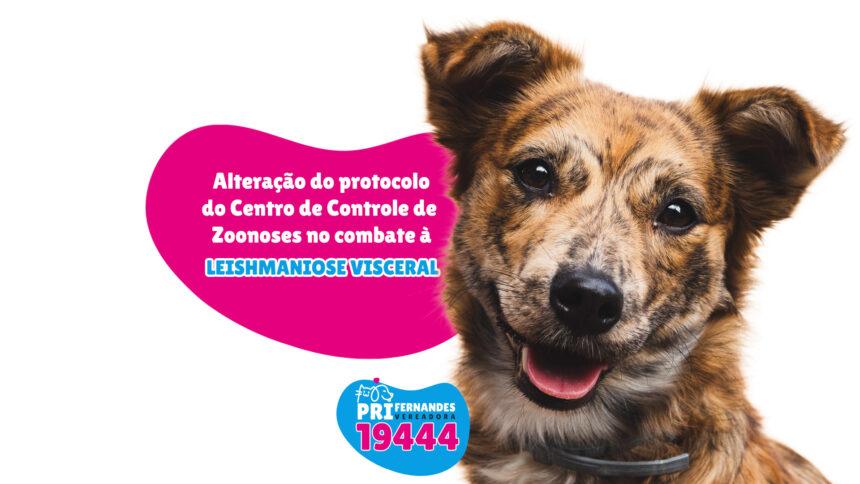 Modificar o protocolo do Centro de Controle de Zoonoses no Combate à leishmaniose visceral canina